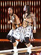 Wwe tag team champions the usos.jpg