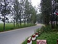 X100洪埠公路 - panoramio.jpg