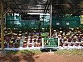 Yercaud 44th Flowershow-16-yercaud-salem-India.jpg