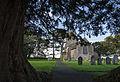 Yew, Lydlinch Churchyard.jpg