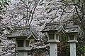 Yoshinoyama (7134438883).jpg