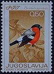 Yugoslavian stamp with Pyrrhula pyrrhula 1968.jpg
