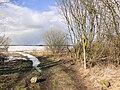 Zarnewenz Dassower See NSG 2010-03-03 038.jpg