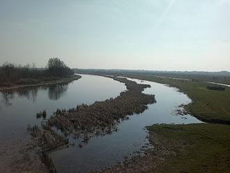 Zasavica (bog) - Canal-tributaries to Zasavica
