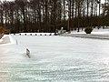 Zollikon frozen Fohrbach.JPG