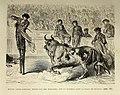 """""""Miguel Lopez Gorrito, monté sur des échasses, tue un taureau dans la Plaza de Séville"""" (19316171333).jpg"""
