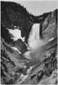 """Yellowstone Falls,"" Yellowstone National Park, Wyoming. (vertical orientation), 1933 - 1942 - NARA - 519993.tif"