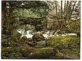 (Torrent Walk I, Dolgelly (i.e. Dolgellau), Wales) LOC 3752432652.jpg