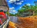 Área de Proteção Ambiental da Ilha do Combu Johanan Toledo (04).jpg