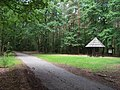 Čertův dub, palouček na rozcestí.jpg