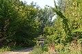 Берега Сакмары - panoramio.jpg