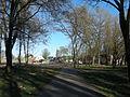 Городской сад в Кременчуге (18).jpg
