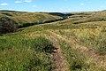Дорога вниз - panoramio (4).jpg