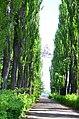 Наводницкий парк в Киеве. Фото 5.jpg