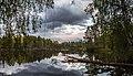 Нижне-Исинский пруд (Иван-Озеро) - panoramio (2).jpg