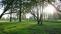Около ГМА им. адм. С. О. Макарова - panoramio.jpg