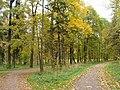 Осень в Дворцовом парке Гатчины - panoramio (8).jpg