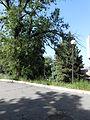 Парк Шевченка 6.JPG