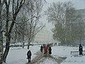 Первый осенний день зимы - panoramio (1).jpg