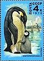 Почтовая марка СССР № 4847. 1978. Животный мир Антарктики.jpg