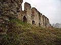 Руїни замку в с. Новомалин (ракурс 15).JPG