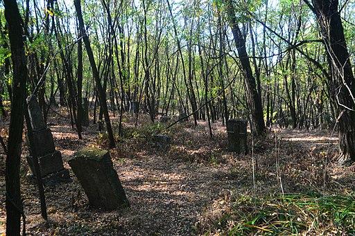 Старе кладовище в с.Трахтемирів