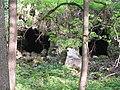 Старый грот, руины. Усадьба Валуево.jpg