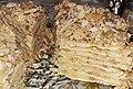 Торт Наполеон (домашние кусочки).jpg