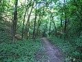 Украина, Киев - Голосеевский лес 06.jpg