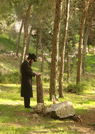 Solitude - Breslover Hasid practicing hitbodedut.