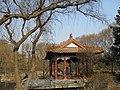 南京明孝陵梅花山 - panoramio (5).jpg