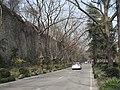 南京明陵路古城墙 - panoramio.jpg
