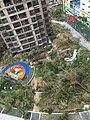 台风莫兰蒂重创花园城市厦门.jpg