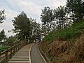 小武夷公园 - Small Wuyi Park - 2015.11 - panoramio (1).jpg