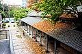 落葉 Fallen Leaves - panoramio.jpg