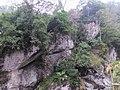 青蛙石 Frog Rock - panoramio.jpg