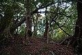 韮生山氏神社 - panoramio.jpg