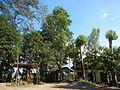 06017jfBahay Puso Virgen Milagrosa Rosario Seminary Balanga City Bataanfvf 27.JPG