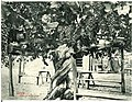 06694-Kalifornien-1905-Garden Scene in California-Brück & Sohn Kunstverlag.jpg