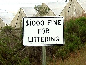 Litter in the United States - California posts the maximum fine on its roadside signs.