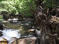 10300 Beyoba-Edremit-Balıkesir, Turkey - panoramio (2).jpg