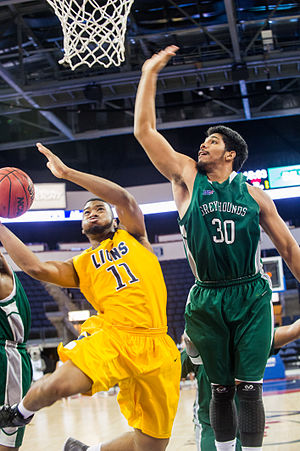 Eastern New Mexico Greyhounds - The Greyhounds men's basketball team in action against the Texas A&M–Commerce Lions in 2014