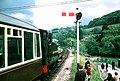 15-40 train from Buckfastleigh - geograph.org.uk - 1580127.jpg