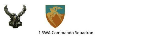 1 SWATF Commando Squadron