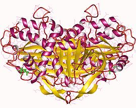 Image illustrative de l'article Ovalbumine