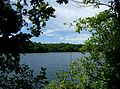 2012-06-27-Walden-Pond-02 33.jpg