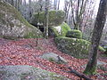 2014-01-05T15-43-41 img 1579.jpg