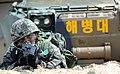 2014.3.31. 한미해병대 연합상륙훈련(쌍룡훈련) March. 31st. 2014. ROK-US Marine Combined Amphibious Exercise (SSang Yong) (13557133185).jpg