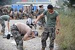 2015.9.16. 해병대 2사단-한미 해병 합동훈련 - 16th Sep. 2015. ROK 2nd Marine Division - ROKMC & USMC joint trainning (21959419128).jpg
