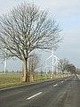 20150220 xl Windkraftanlage WKA 16356 Werneuchen 2788.jpg